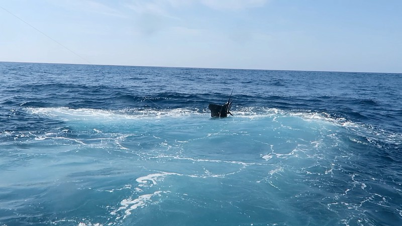 scottSailfish1.jpg