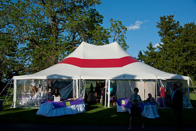 Arts in the Vineyard 2012