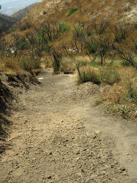 20100710057-Doc Larsen Trailwork CORBA.JPG