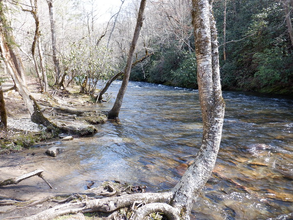 March 6, 2021 - Deep Creek