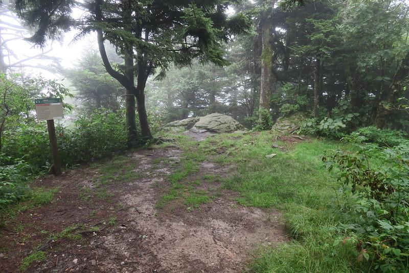 Cliffside Campsite -- 5,622'