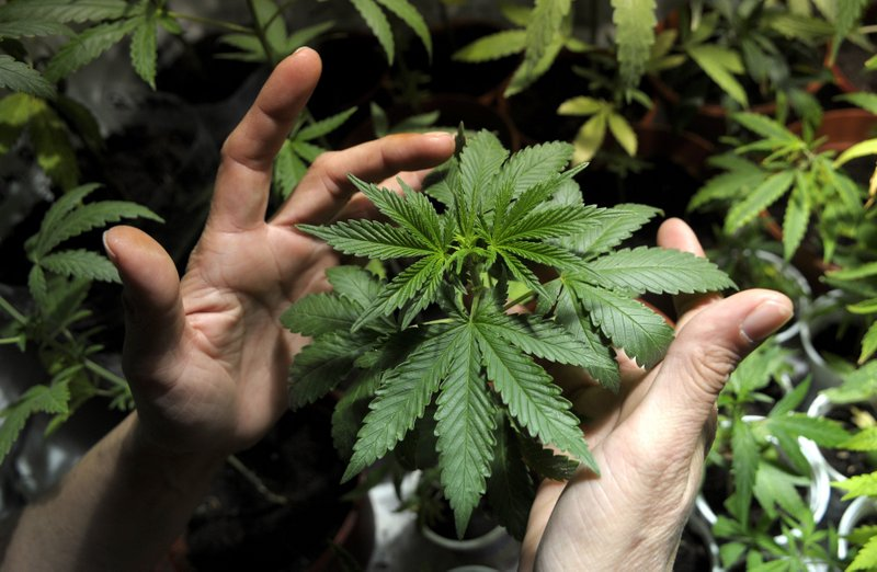 """. <p>6. MARIJUANA <p>58 percent support legalization in new poll of American dopes. (unranked) <p><b><a href=\'http://usnews.nbcnews.com/_news/2013/10/22/21081289-clear-majority-favors-legal-marijuana-new-gallup-poll-shows\' target=\""""_blank\""""> HUH?</a></b> <p>    (AP Photo/Matilde Campodonico, File)"""