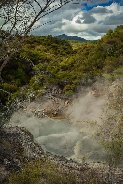 Rotorua-9.jpg
