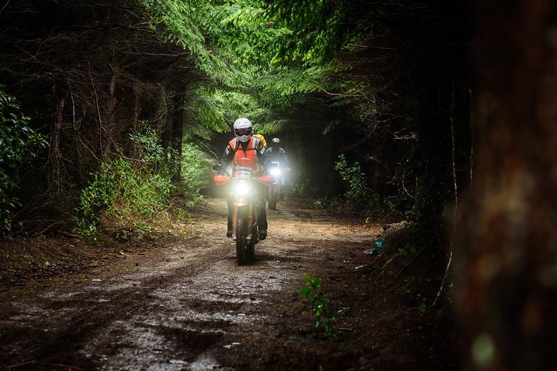 2019 KTM New Zealand Adventure Rallye (284).jpg