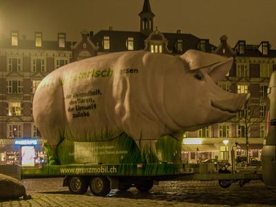 Cop 15 protesters in Copenhagen