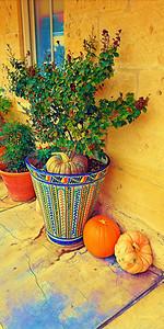 16x32 Talavera pot with pumpkins