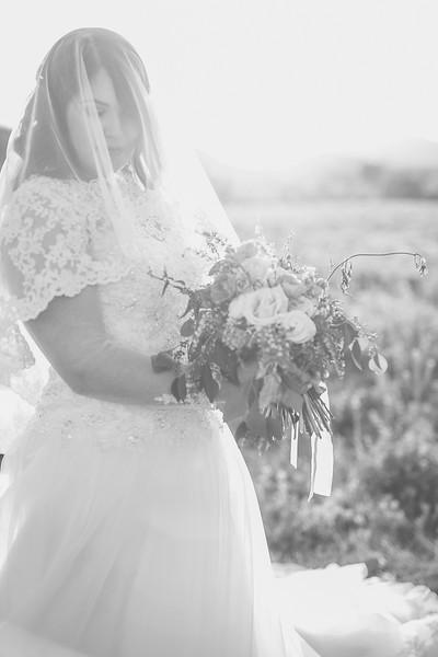 Bridals-472.jpg