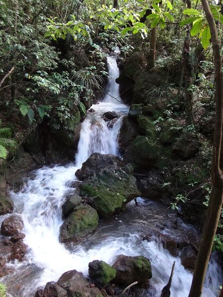 49 Forest trail waterfall.JPG