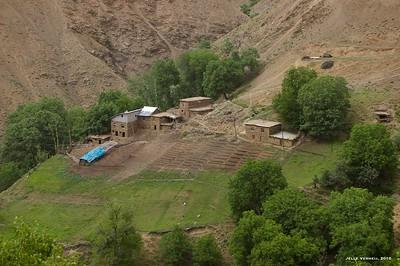 Muş central district *