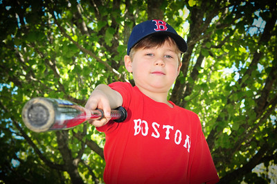2013 Redsox(ordered)