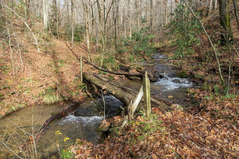 Coontree Loop Trail (#144)