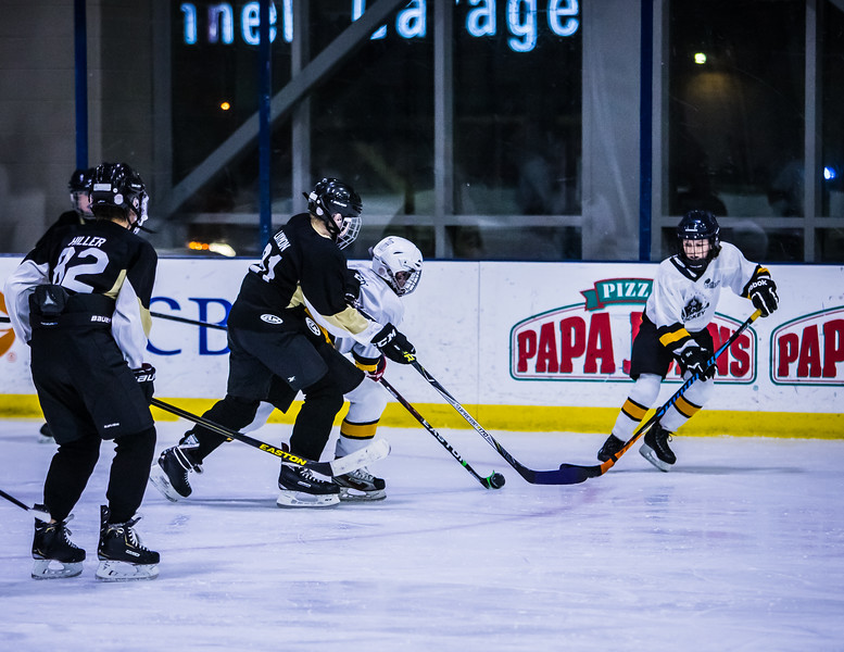 Bruins-116.jpg