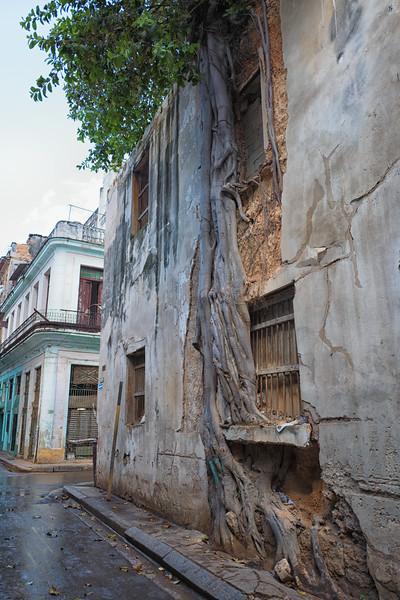 Cuba_-52.jpg