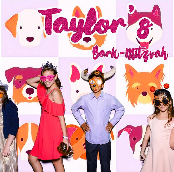 Taylors pawmitzvah-20793.jpg
