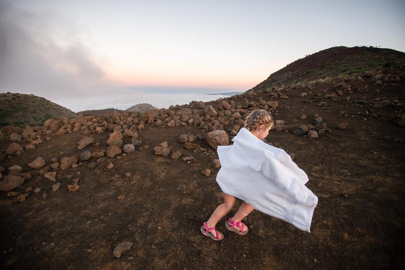Hawaii2019-321.jpg