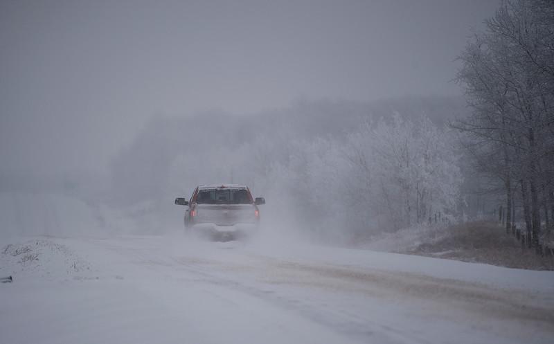 snowy-7.jpg