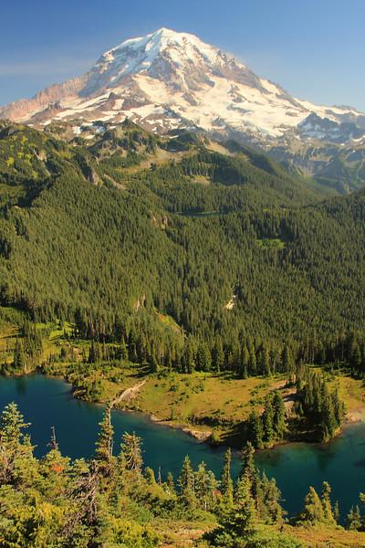 Tolmie Peak 09.JPG