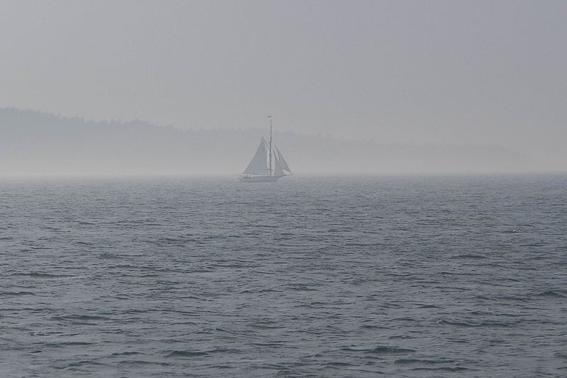 More Fog in Bar Harbor