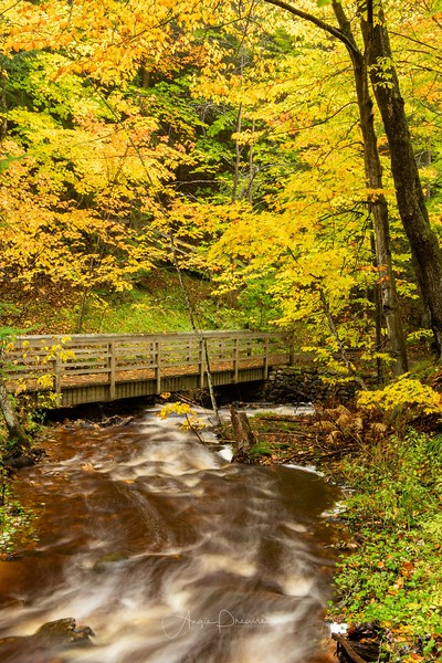 Fall in Munising