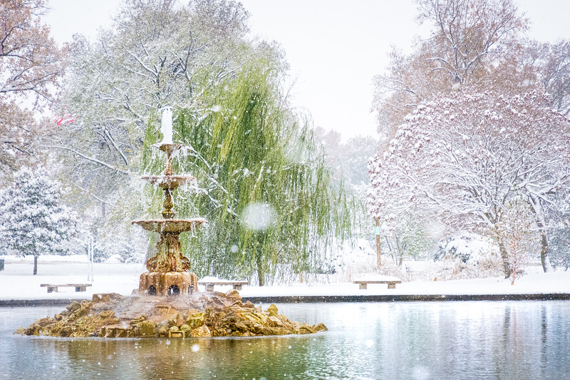 The Fountain in Tower Grove Park