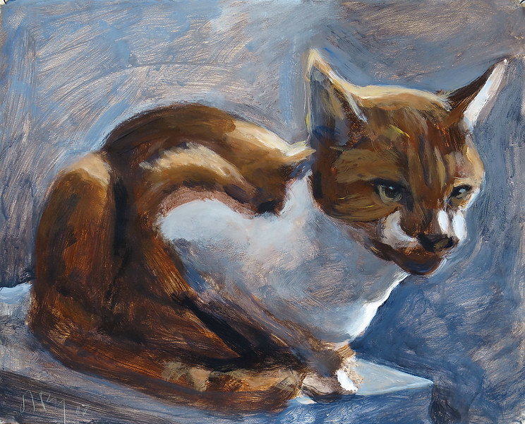 Perching cat (O'Malley); acrylic on paper, 17 x 21 in, 2017