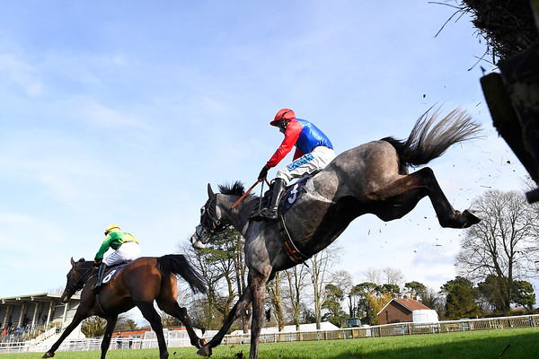 National Spirit Hurdle, Horse Racing, Fontwell Park Racecourse, Arundel, West Sussex, United Kingdom - 23 Feb 2020