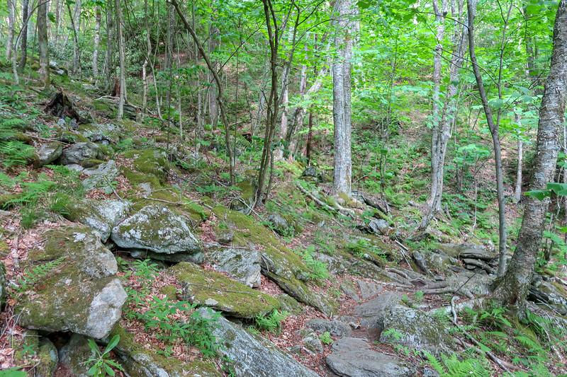 Mountains-to-Sea Trail -- 4,450'