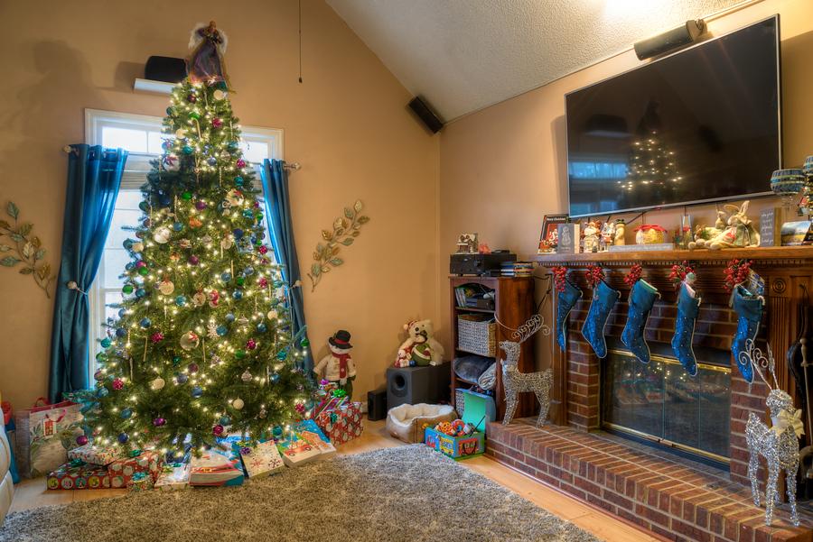 Goodbye Christmas Tree