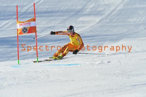 OFSAA Alpine 2014 Level II GS Women