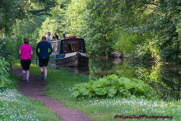 Worcester Canal Caunsall 09.07.2015