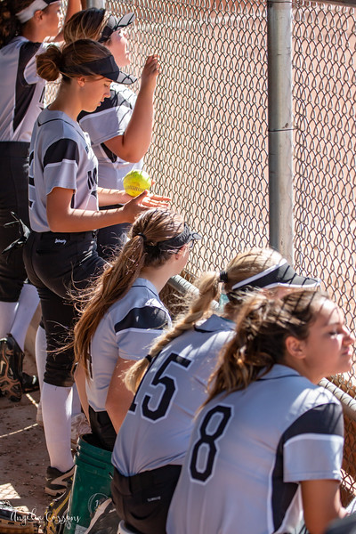 IMG_5492_MoHi_Softball_2019.jpg