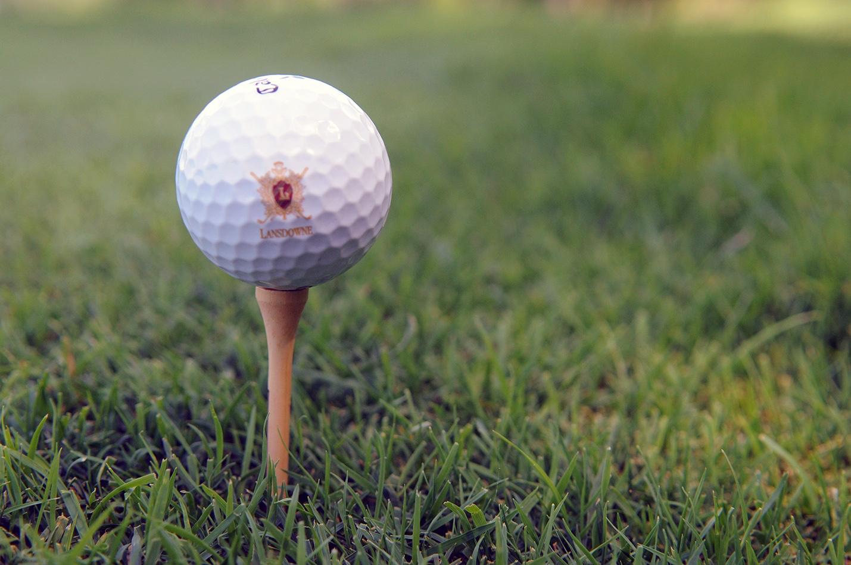 DeSean Jackson Foundation 2015 Golf Tournament