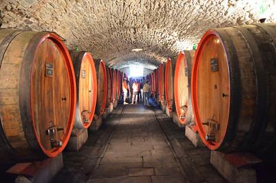 D'Albola Winery/Radda/Italy - May, 2013