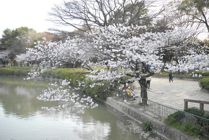Meijo-Park