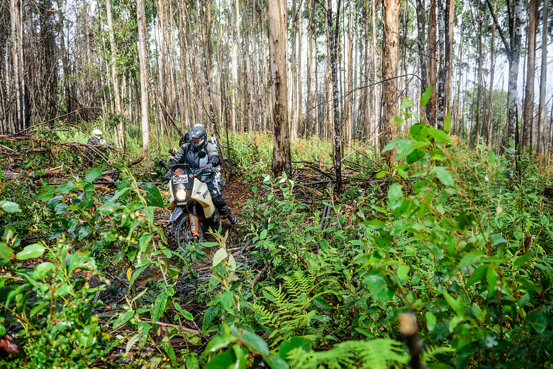 2019 KTM Australia Adventure Rallye (205).jpg
