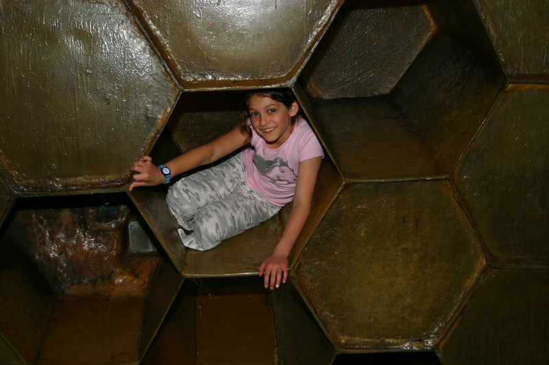 Anisa in the hive.