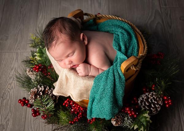 Ellis Newborn Portrait Digitals
