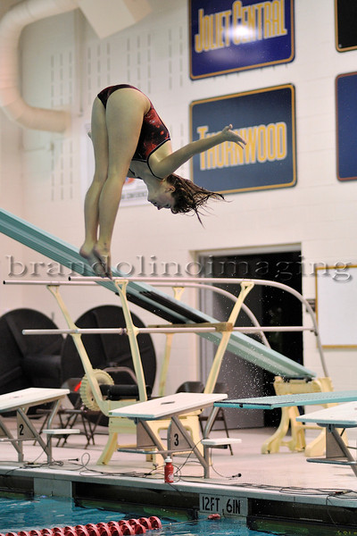 Lincoln-Way Central Girls Diving (2011)