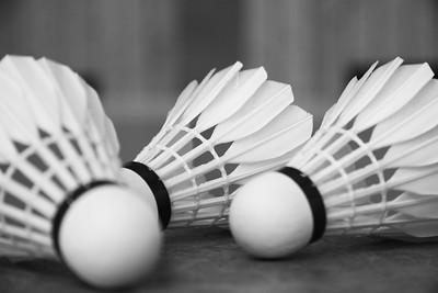 Just Badminton