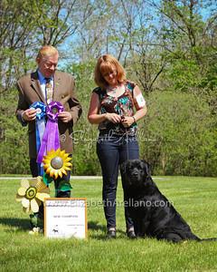 Winners Dog