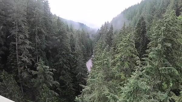 Tolmie Peak Rain Video