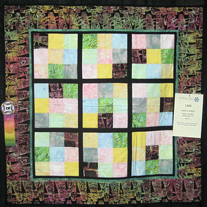 Junior Quiltmakers' Quilts