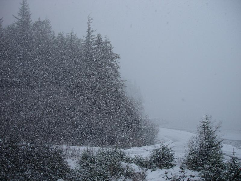Alaska 2008 077.jpg