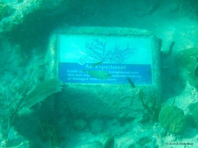 St. Thomas & St. John US Virgin Islands