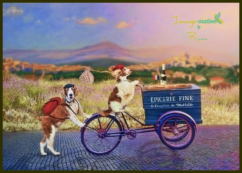 Travels-with-Triss-France-imaginationbyrowena-web.jpg