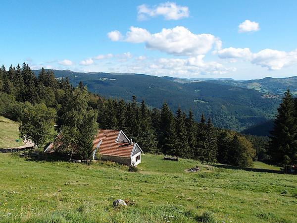 Dans les Vosges | In the mountains