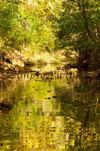 Lanana Creek011