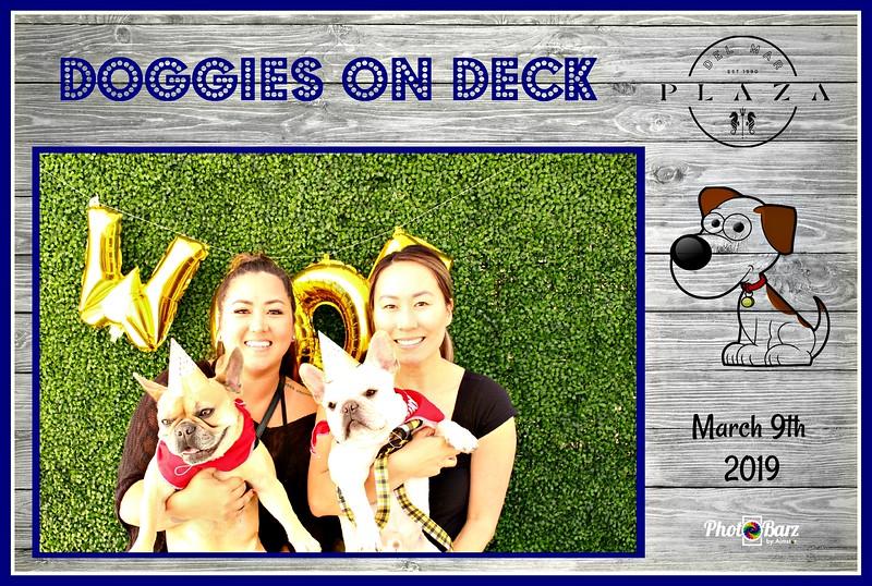 Doggys on Deck66.jpg