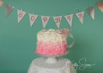 Cake Smash and 1 year photos