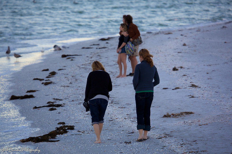 Sanibel Feb_2013_ 54.jpg
